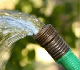 drink-water-from-garden-hose-rodale