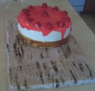 """""""Cheesecake"""""""